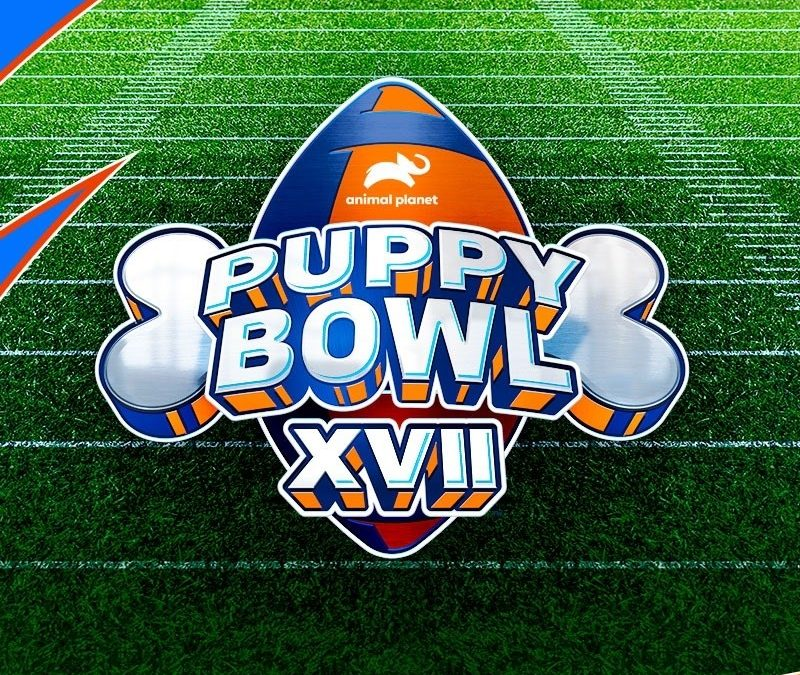 Fun and Games with Puppy Bowl XVII