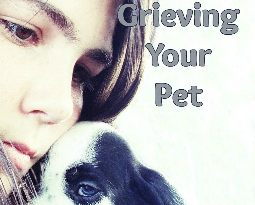 Resources for Grieving Your Pet