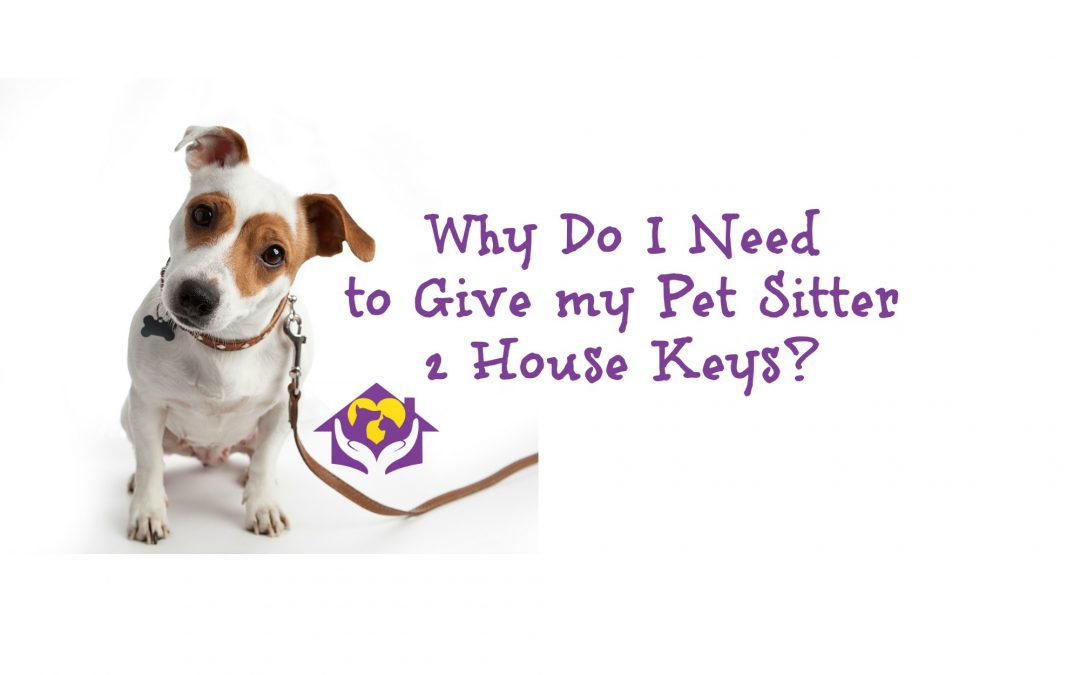 Why Do I Need to Give my Pet Sitter 2 House Keys?