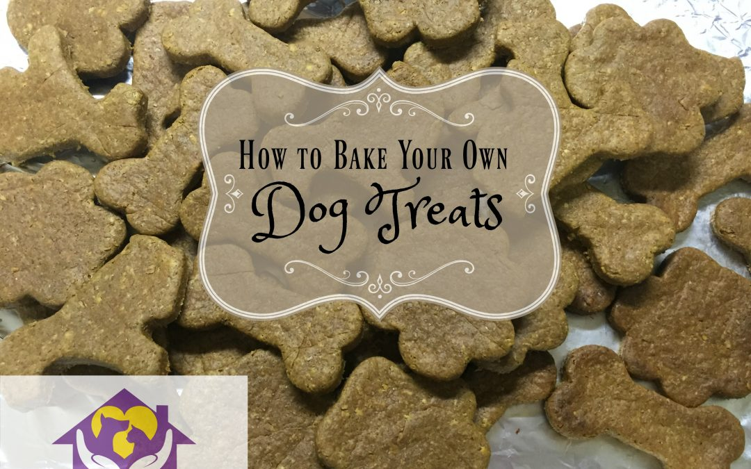 How to Bake Your Own Dog Treats!