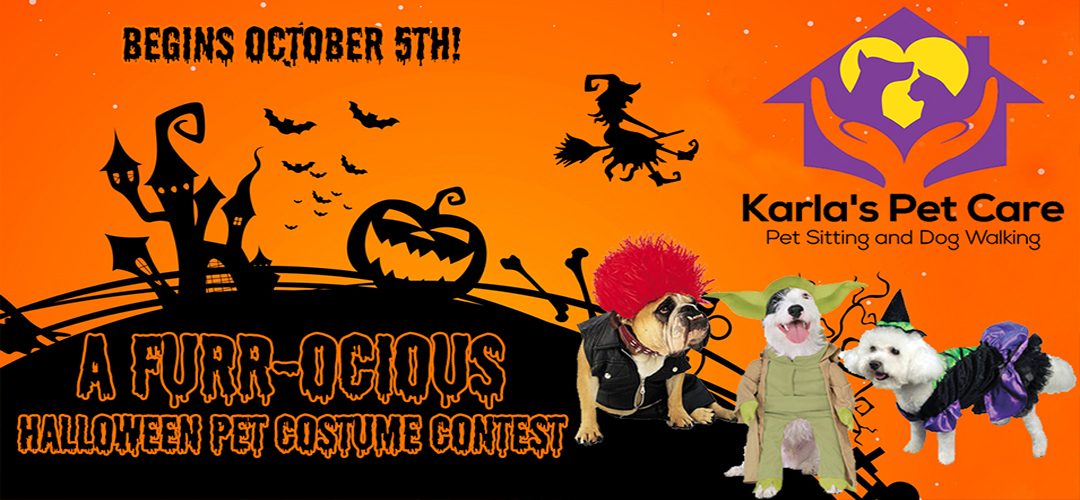 A Furr-ocious Pet Costume Contest – Karla's Pet Care