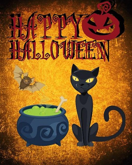Top 3 Halloween Safety for Your Pets