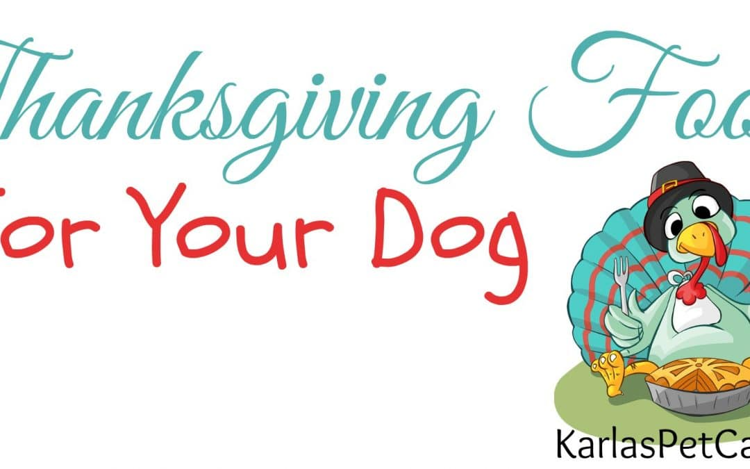 Yummy Thanksgiving Food For Your Dog