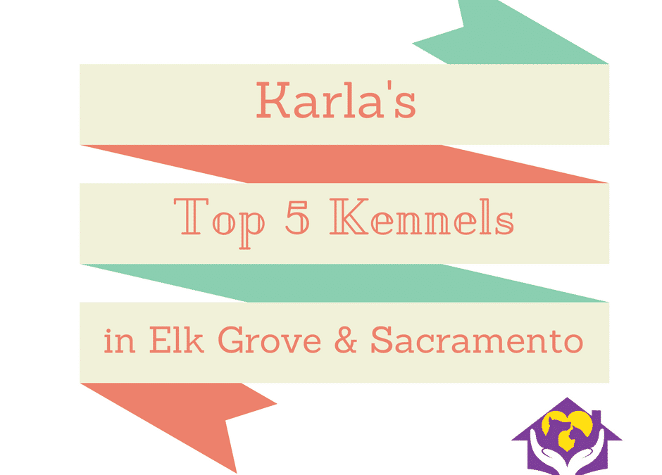 Karla's Top 5 Kennels in Elk Grove & Sacramento