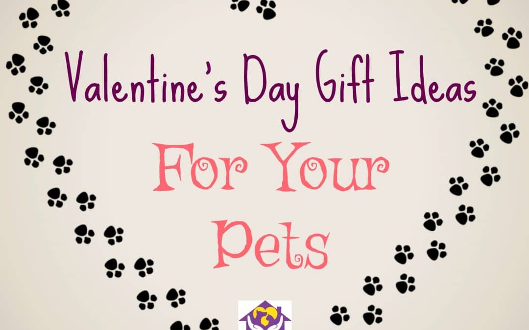 Valentine's Day Gift Ideas For Your Pets – Karla's Pet Care