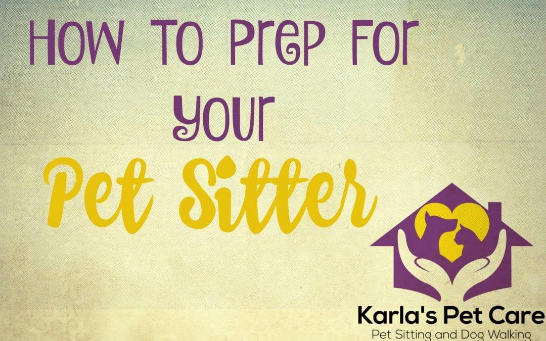 Pet Sitter Prep: Tips for Better Care