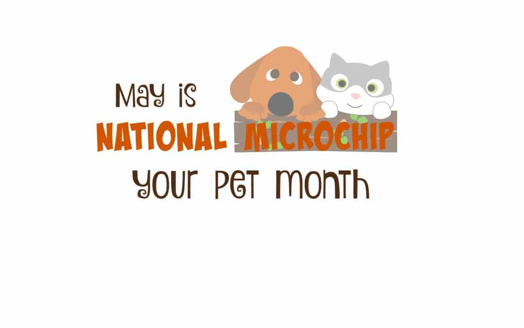 National Microchip Your Pet Month in May