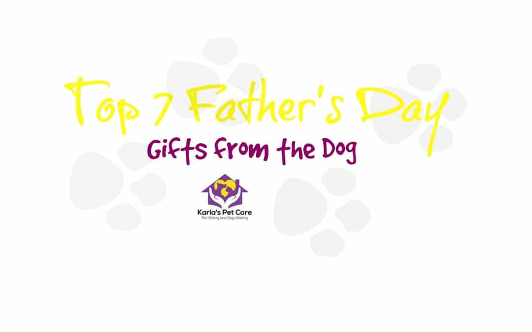 Top 7 Father's Day Gifts from the Dog