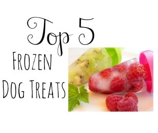 Frozen Dog Treats for the Summer