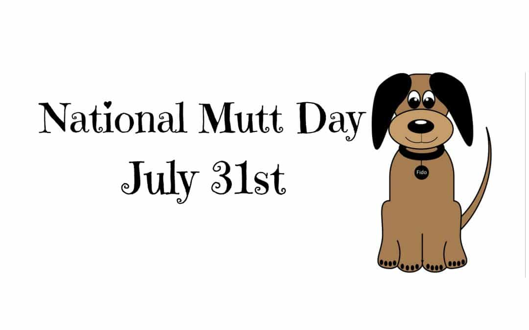 Celebrate Mixed Breeds on National Mutt Day – July 31st!