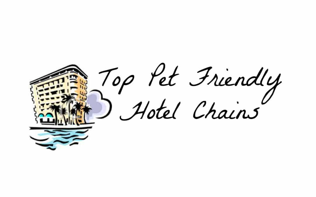 Top Pet Friendly Hotel Chains