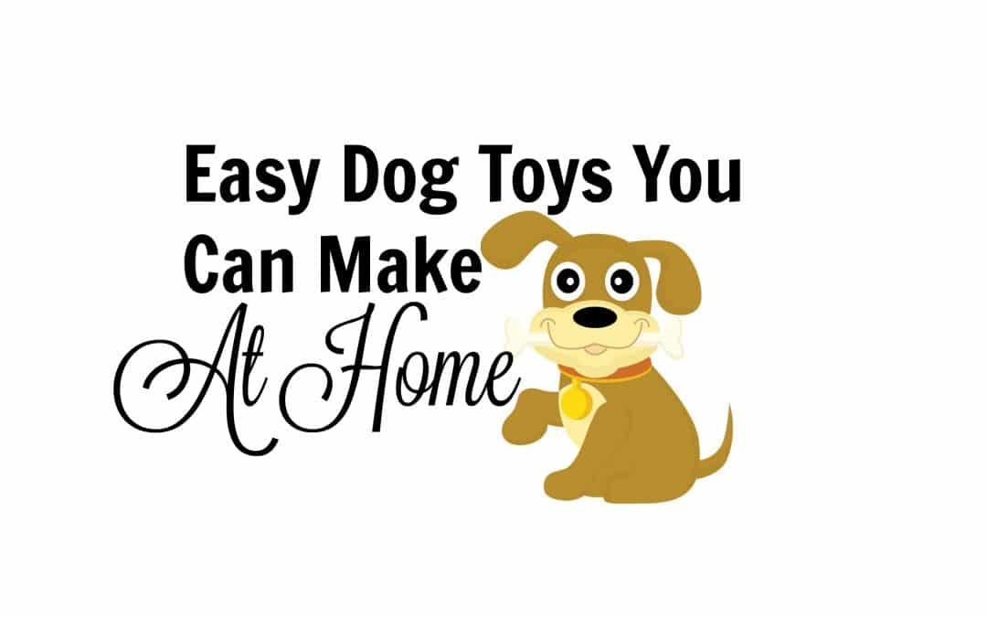 Easy Dog Toys You Can Make at Home