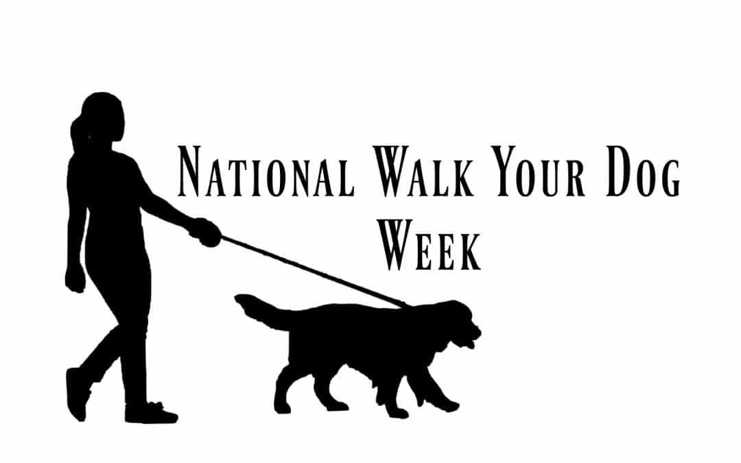 Celebrate National Walk Your Dog Week