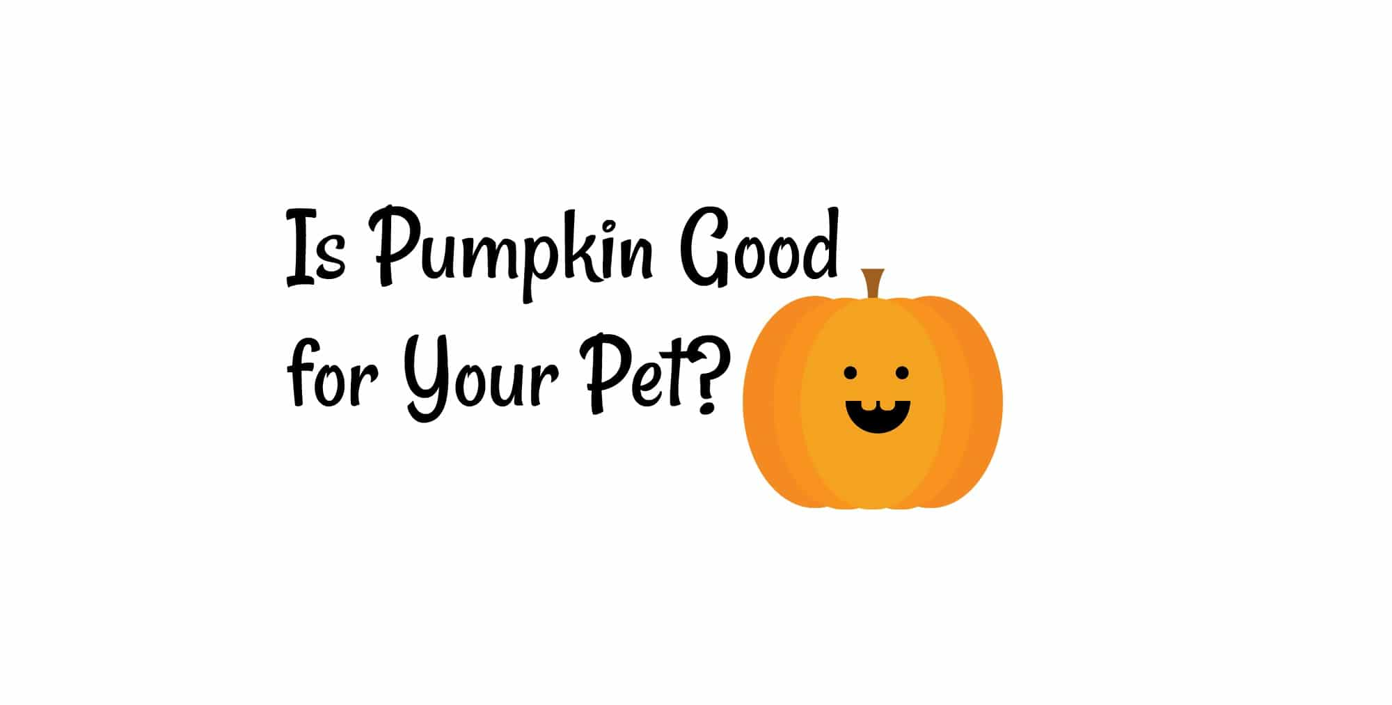 Is Pumpkin Puree Good For Dogs