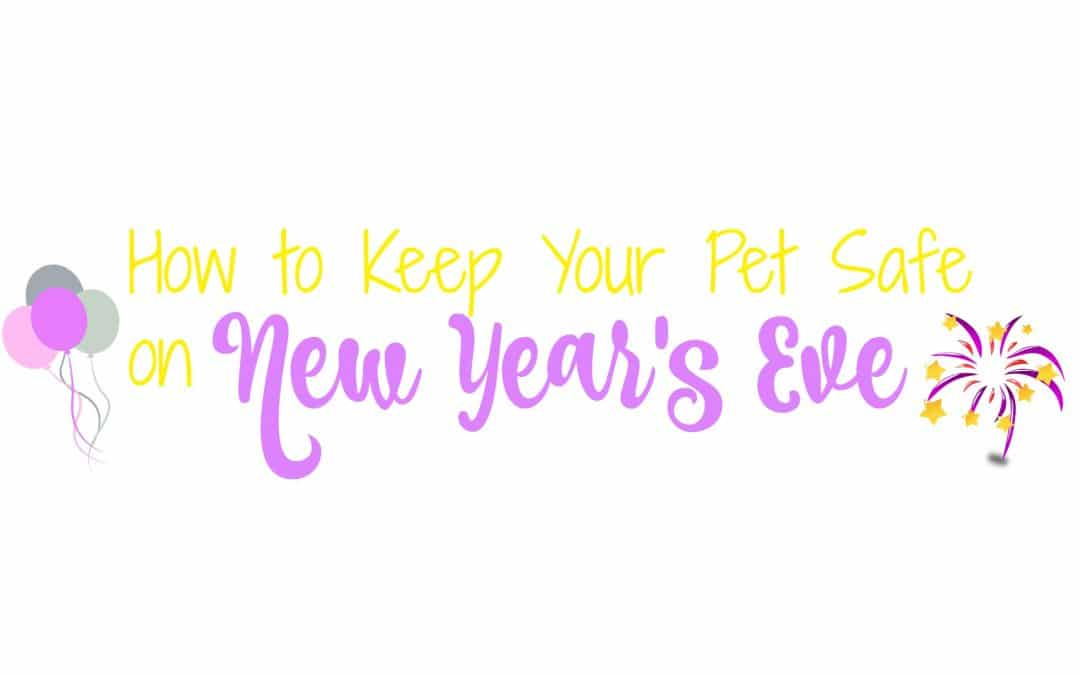 How to Keep Your Pet Safe on New Year's Eve