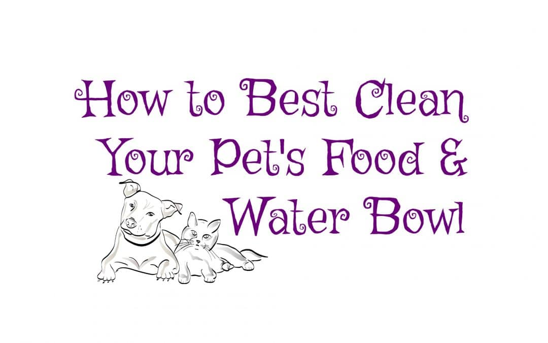 How to Best Clean Your Pet's Food & Water Bowl