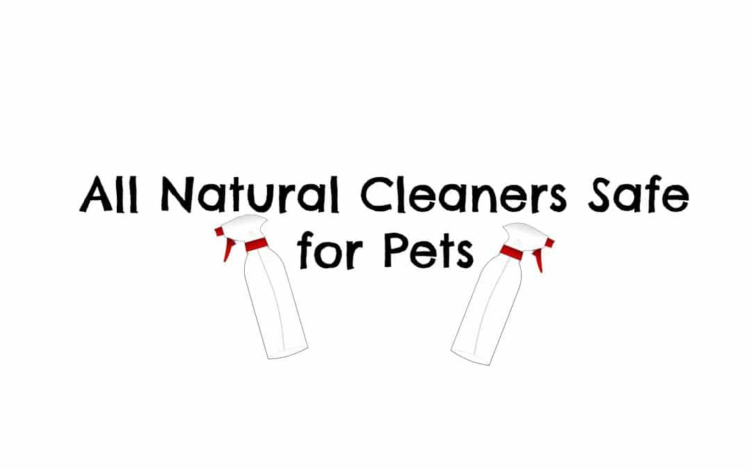All Natural Cleaners Safe for Pets