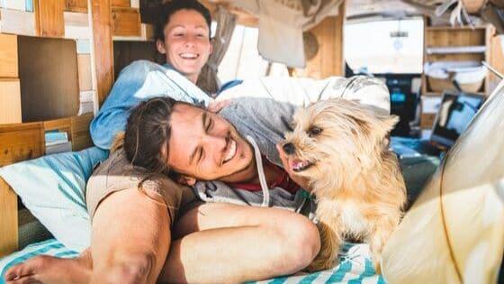 5 Ways to Celebrate National Dog Week