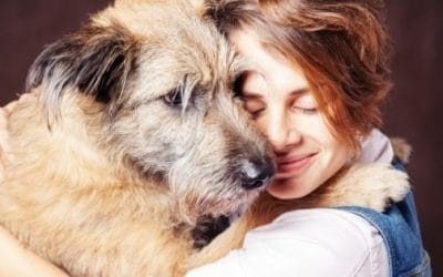 9 Signs You're Ready to Adopt a Dog