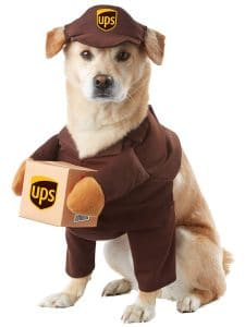 Top 7 Dog Halloween Costumes for 2019