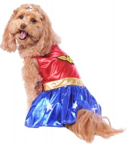 Pet costume for Halloween