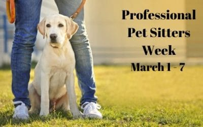 Professional Pet Sitters Week March 1 - 7