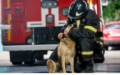Tips to Keep Pets Safe from House Fires