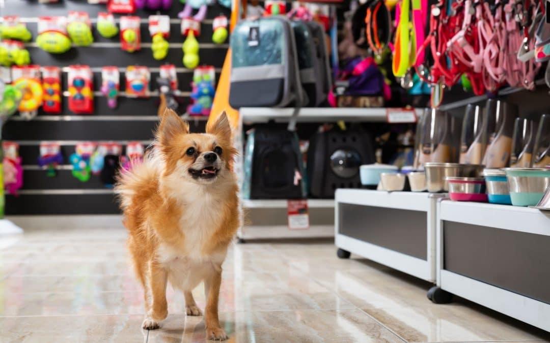 Best Places to Buy Pet Supplies in Elk Grove CA
