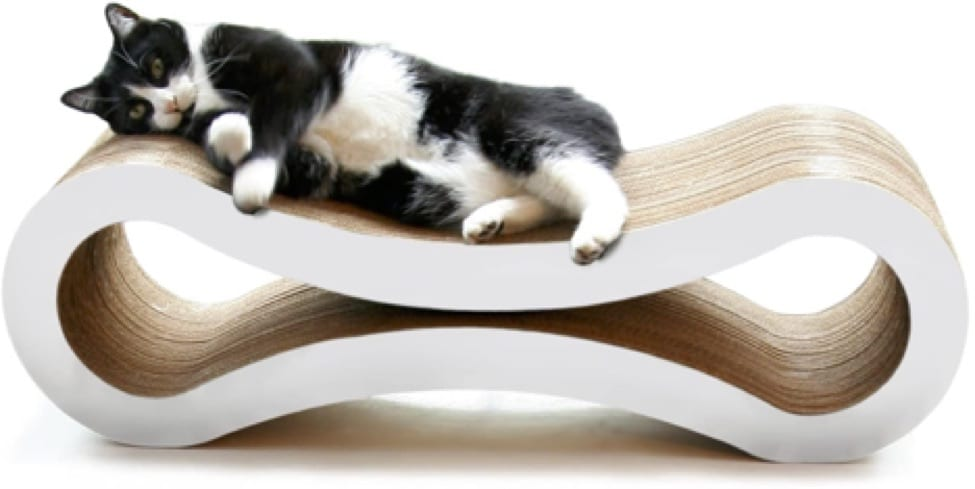 5 Cat Products We Can't Live Without